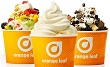 Orange Leaf rewards coupon
